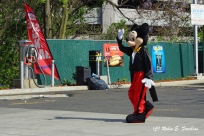 Mickey Even Decided to Visit