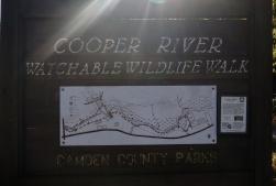 ~1~ Cooper River - Haddon Township, NJ