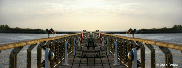 Birds on Rail - Symmetry 1WP