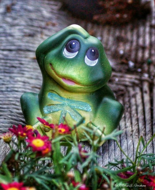 Froggy Friday