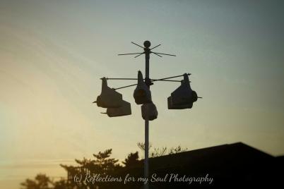 silhouette bird houses