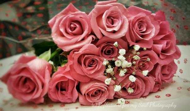 rose 25